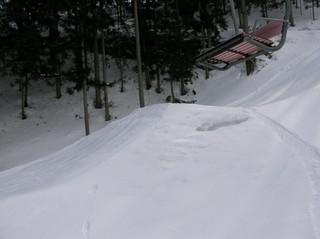 20060206_3