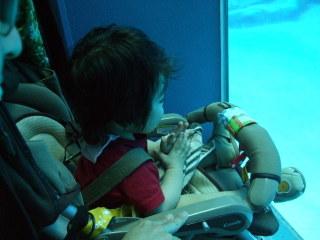 20080819_baby03_01