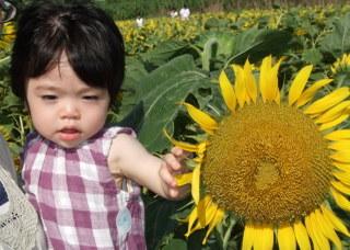 20080819_baby06_02
