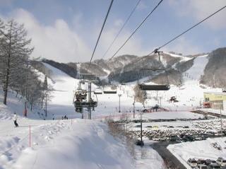 20090113_ski_02