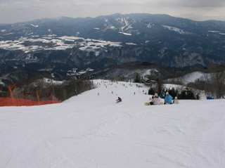 20090213_ski_01