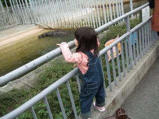20091029_baby_04