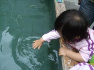 20101017_baby_01