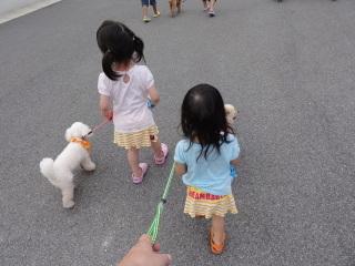 20110818_dog_01