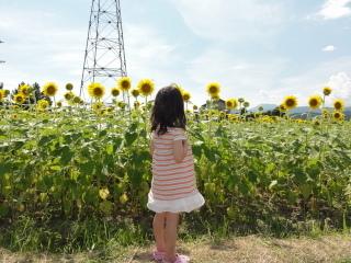 20110818_flower_04